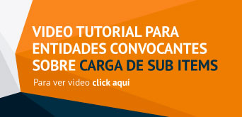 Carga de sub items